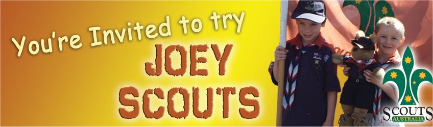 Try Joey Scouts